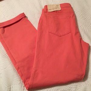 NWT Sz 8 Modern Straight, Coral Jeans - Loft